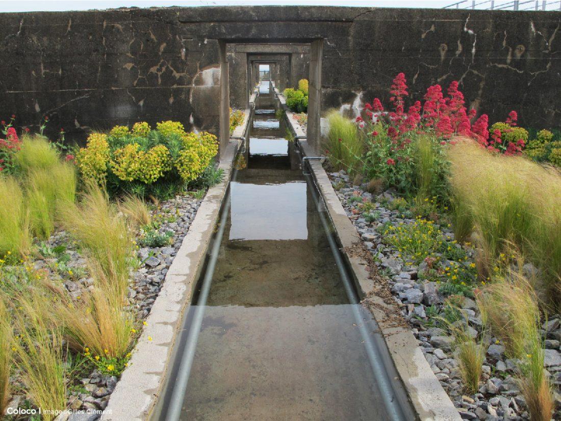 coloco paysagistes urbanistes jardiniers jardins du tiers paysage. Black Bedroom Furniture Sets. Home Design Ideas