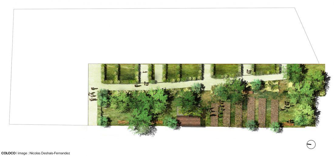 Coloco paysagistes urbanistes jardiniers jardin 28 images 1000 images about gramin 233 es for Jardin de jardiniers