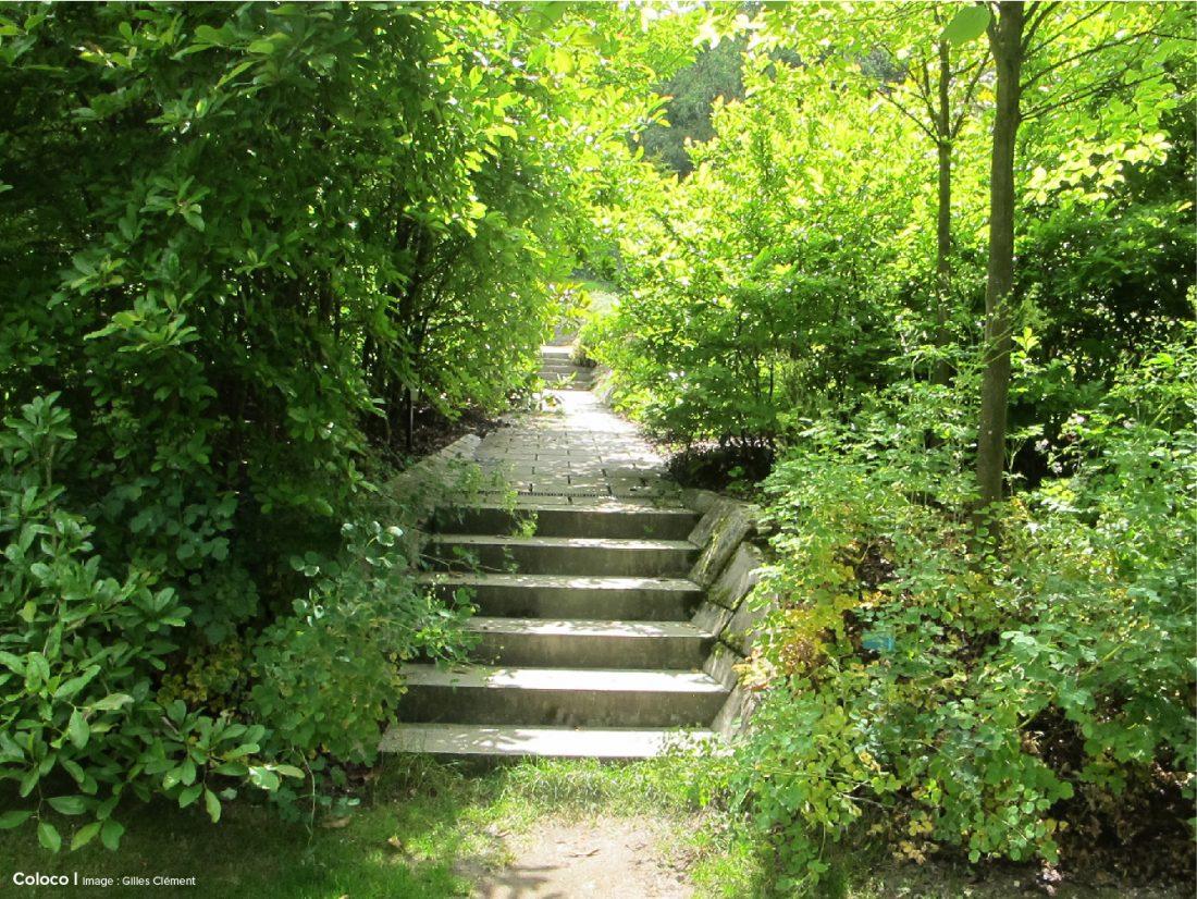 Coloco paysagistes urbanistes jardiniers jardin de for Jardins de jardiniers