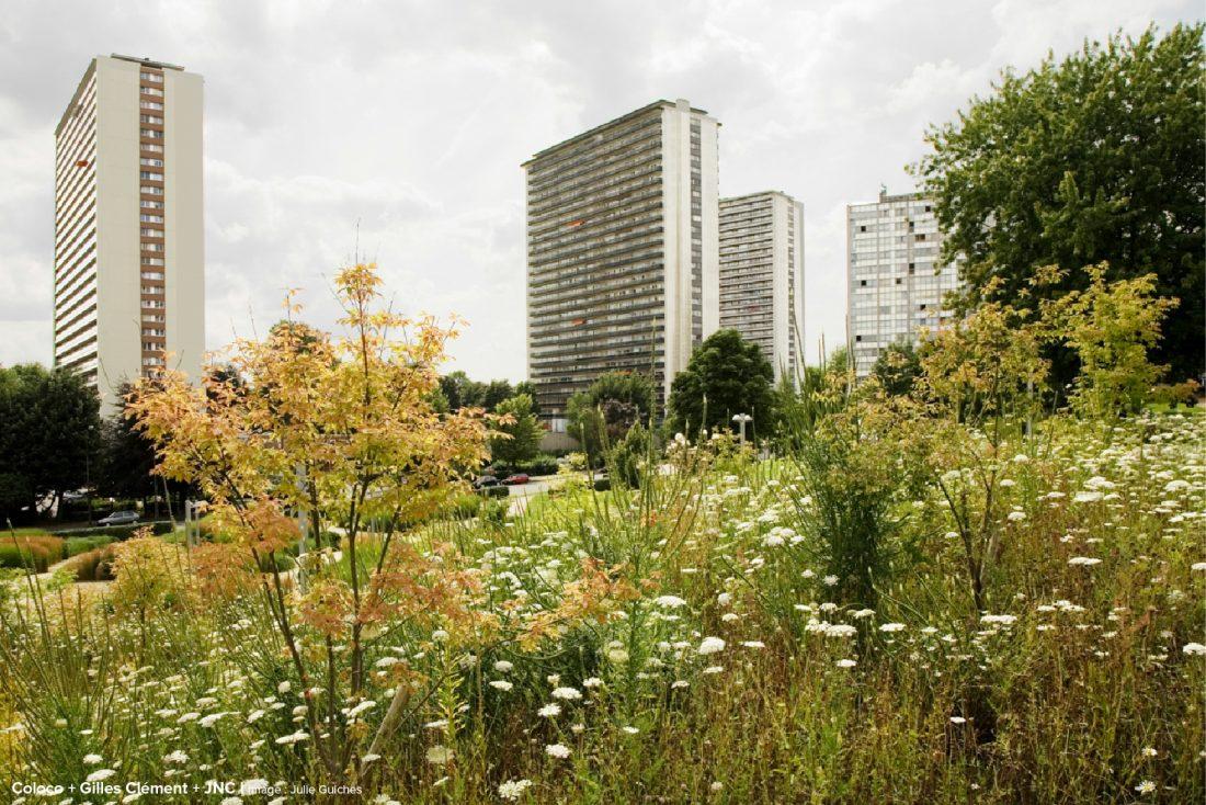 coloco paysagistes urbanistes jardiniers jardin du foyer laekenois. Black Bedroom Furniture Sets. Home Design Ideas
